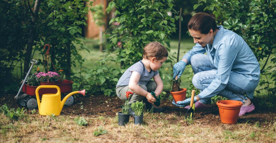 Gartenpflege Rechte Und Pflichten Des Mieters Urbia De